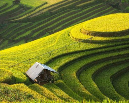 Best time to visit Vietnam - September