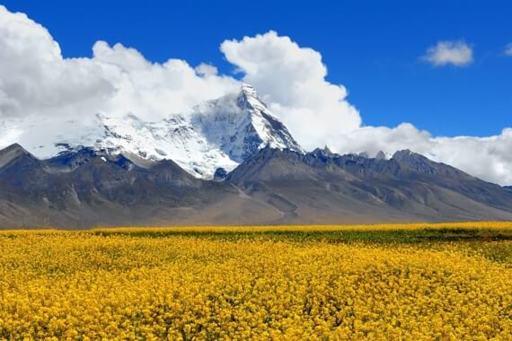 Bhutan Trekking Tour: Jhomolhari Trek (Chomolhari)