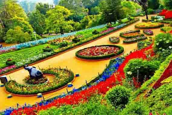 Nilgiri Hills Relaxation Trip