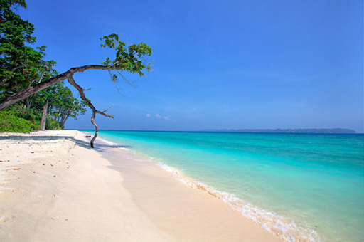 Best Of Andaman Beaches