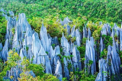 Sarawak Escape: Mulu National Park