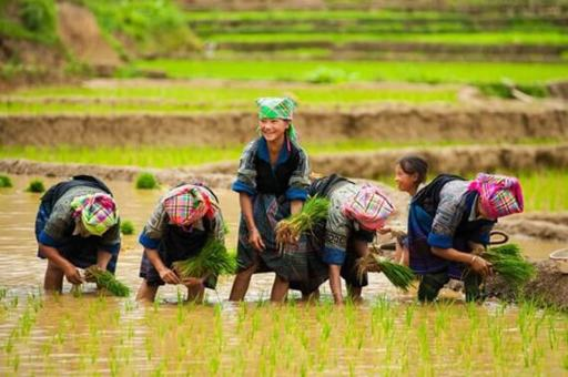Vietnam Adventure Tour: Kayaking, Hiking & Cycling