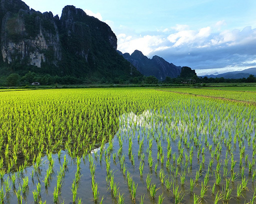 When is the best time to visit Laos - June